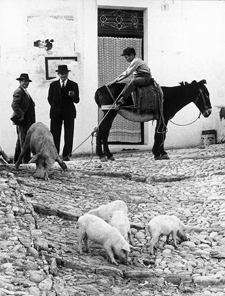 Puglia, 1958