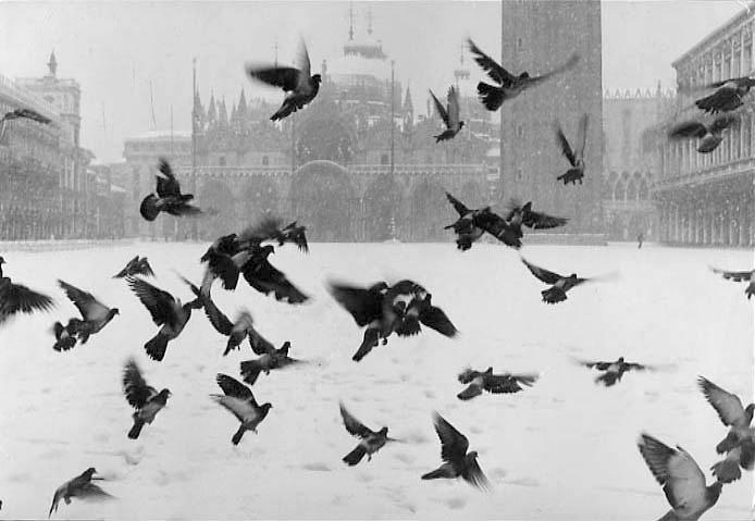 Venice. San Marco, 1960 c.