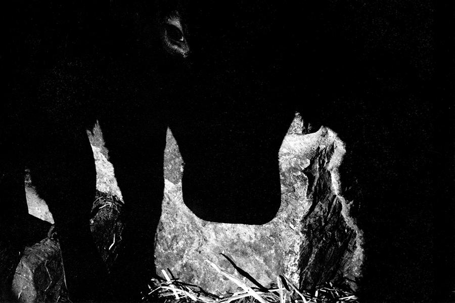 Dragoni. Cow, 1990