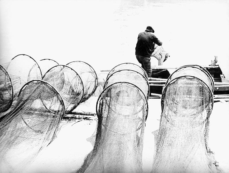 Nets, 1957 c.