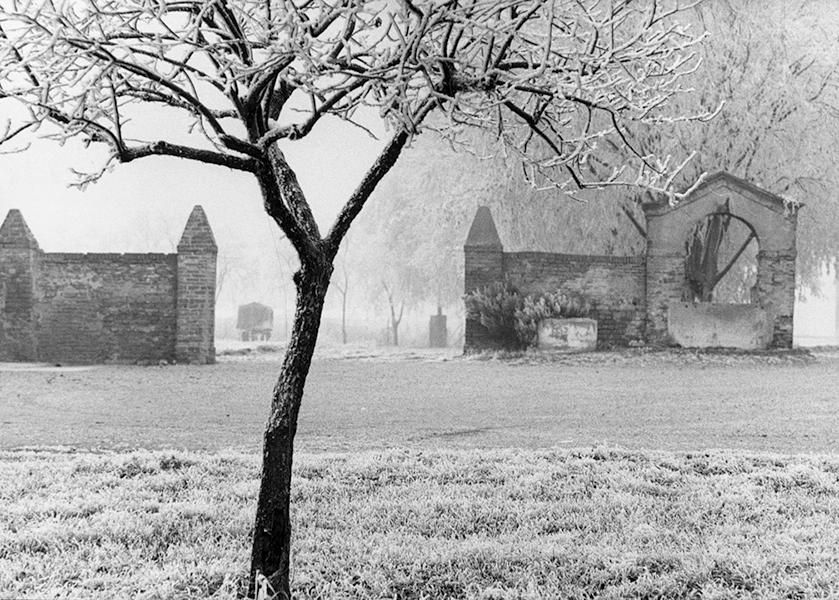 Frost in Salara, 1999