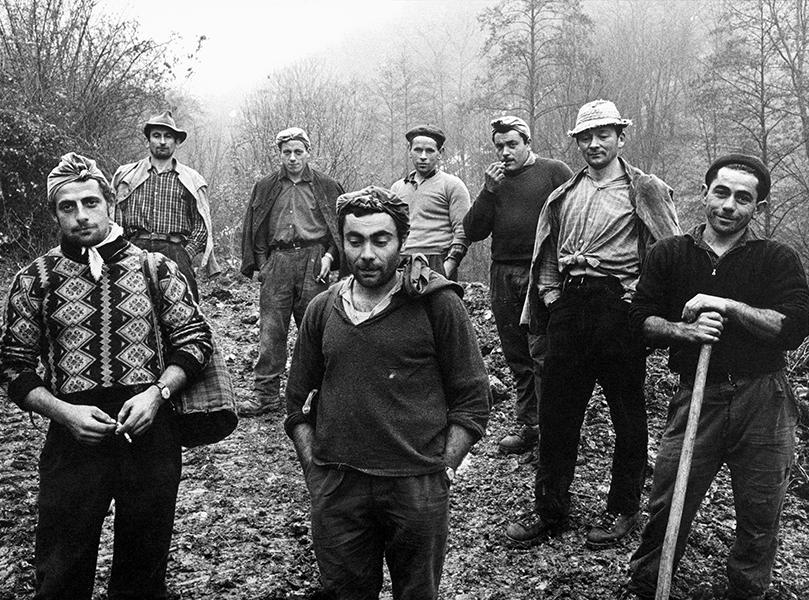 Lumberjacks on Mount Misma, 1966