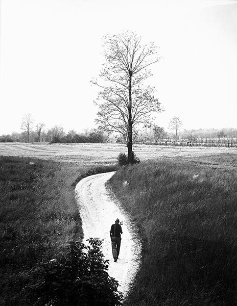 Giuseppe Bruno.  A Journey to Carnia, 1958 c.