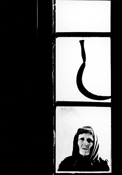 Alfredo Camisa. The Sickle, 1956