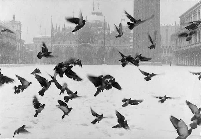 Gianni Berengo Gardin, Venice. San Marco Square, 1960